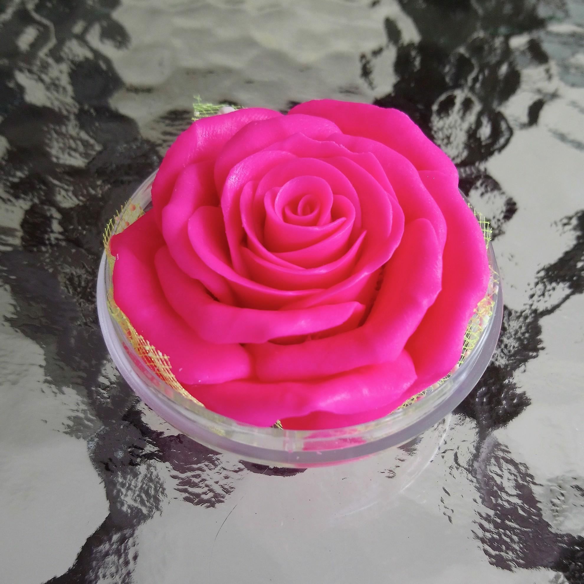 rose clair